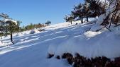 Chute-neige