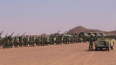 Polisario troupes