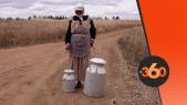 cover Video - Le360.ma •هذه مشاكل منتجي الحليب الصغار