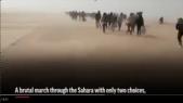 Algérie-migrants: Associated Press diffuse les images de la honte
