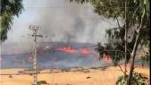 Incendie forêt Tanger