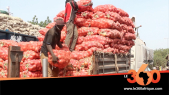 Vidéo. Mali: les légumes du Maroc de retour dans l'assiette des Bamakois