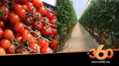 Cover Vidéo -  تعرفو على اكبر ضيعة لزراعة و تصدير الطماطم بالداخلة