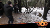 Cover_Vidéo: Le360.ma •قردة وثلوج أزرو تستقطب السياح وتنعش الرواج