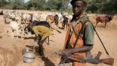 Nigeria: des voleurs de bétail tuent 26 personnes