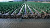 Agriculture eau