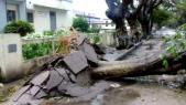 Mozambique et Zimbabwe: le cyclone Idai fait plus de 160 morts