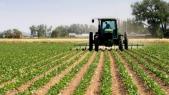 ADA Agriculture