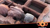 cover: Tétouan : le dernier carré de la tannerie