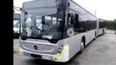Rabat bus