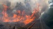Incendie forêt Boufrah 4