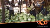 Vidéo. Mali: c'est la saison des pastèques aux multiples vertus