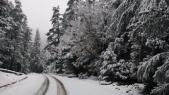 neige 4