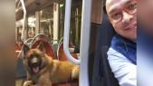 Chauffeur de bus marocain en Finland