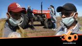 cover vidéo :Le360.ma •فيروس كورونا: هكذا يشتغل الفلاحون في ظل الحجر الصحي