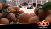Cover Vidéo - استقرار أسعار الخضر والفواكه بسوق الجملة بإنزكان خلال رمضان