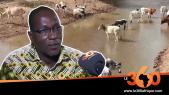 Vidéo. Mauritanie: quel est l'impact de la pandémie du Covid-19 sur le monde agro-pastoral?