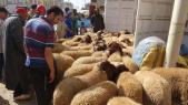 Marché aux moutons