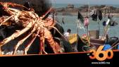 Cover_Vidéo: تعرفوا نقطة افراغ السمك بالصخيرات