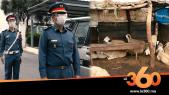 Cover_Vidéo: هكذا يُحارب رجال الدرك الملكي سرقة المواشي بالقُرى