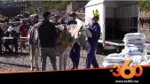 Cover Vidéo - Après les chevaux de calèches, la SPANA aide les mulets d'Imlil