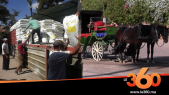 Cover Vidéo - منح أصحاب الكوتشي بمراكش أطنان من الأعلاف