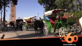 """Cover Vidéo . عربات """"الكوتشي"""" بمراكش: و تستمر المعاناة"""