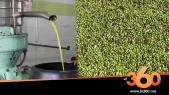Cover_Vidéo: من قلب معصرة لزيت الزيتون بالعطاوية: هكذا تتم عملية عصر زيت الزيتون