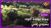 Sidi Ifni Oasis Ougoug