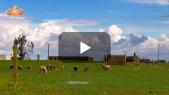 Cover Vidéo -  العالم القروي بتيفلت ينتعش بأمطار الخير