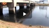 Cover Vidéo -  تلوث نهر أبي رقراق وسكوت السلطات امام غضب الساكنة