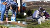 """Cover Vidéo -  شاهد أكبر عملية """"قولبة"""" لآثار الديناصورات بشاطئ أنزا"""