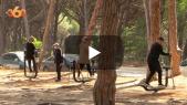 cover vidéo:غابات طنجة ترخي بظلالها على رياضيي المدينة