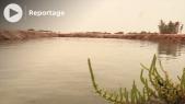 Cover Vidéo - سبخة إمليلي.. بحيرات مائية في فيافي صحراء مدينة الداخلة