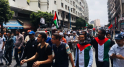 Marche en faveur de la Palestine-6