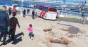 Accident Tanger-11 novembre-4